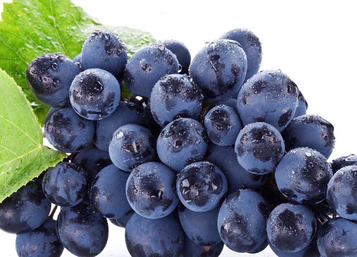 胰腺炎可以吃葡萄吗?