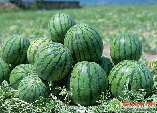 胰腺炎吃西瓜好不好